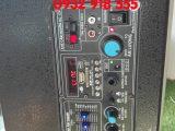 Loa keo mitsunal m12 new