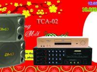 Dan karaoke TCA-02