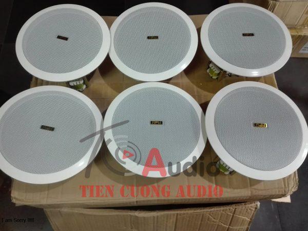 Loa âm trần APU KS805 hàng nhập khẩu chính hãng